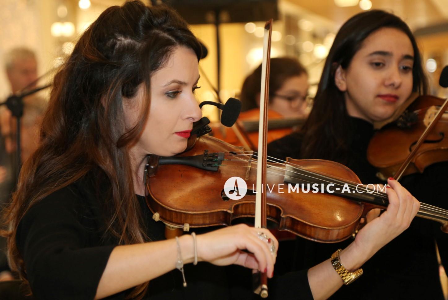 violin I concert master