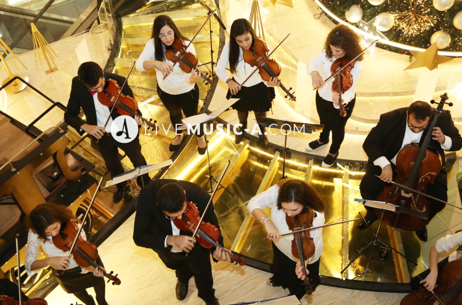 Violins secition