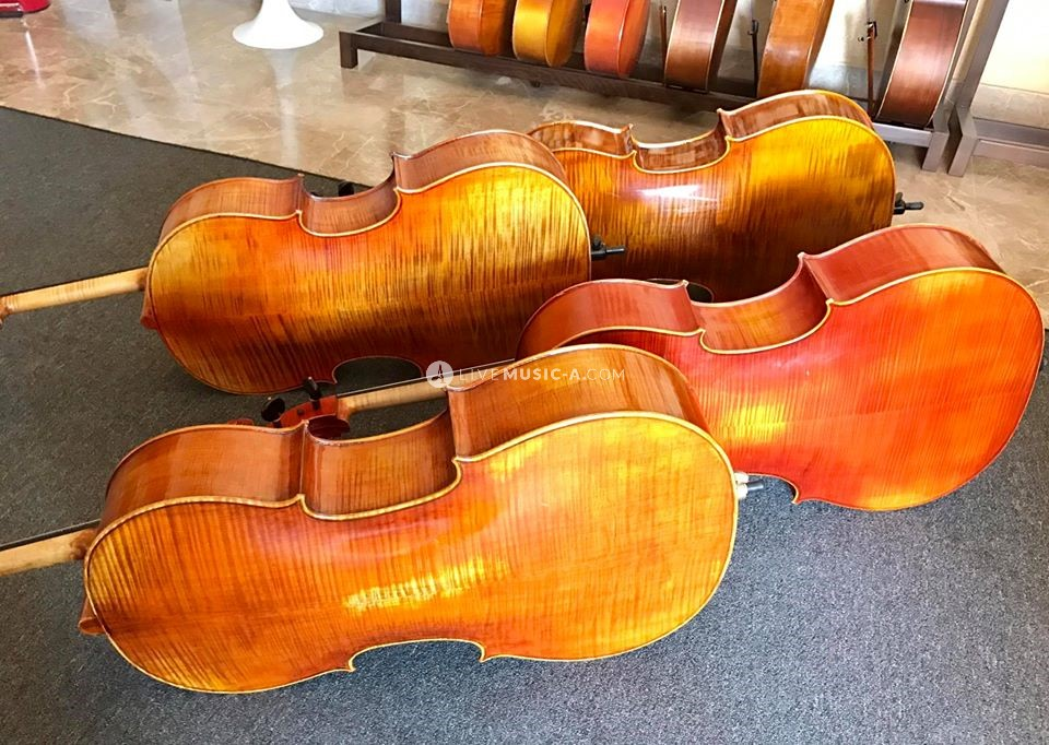 Professional Cellos Ready to be played on