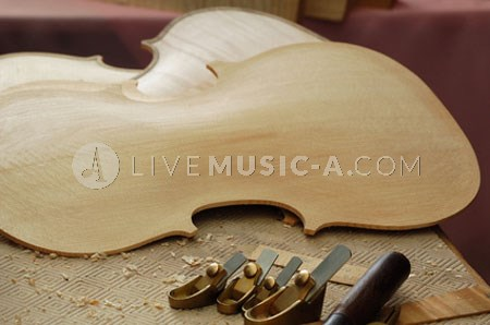 violin wood maple / spruce