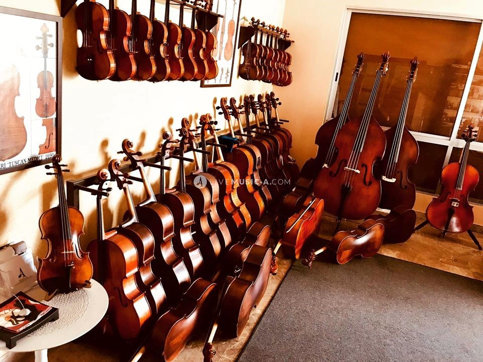Beirut Violin Shop