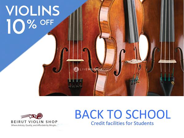 10% Discount Violin