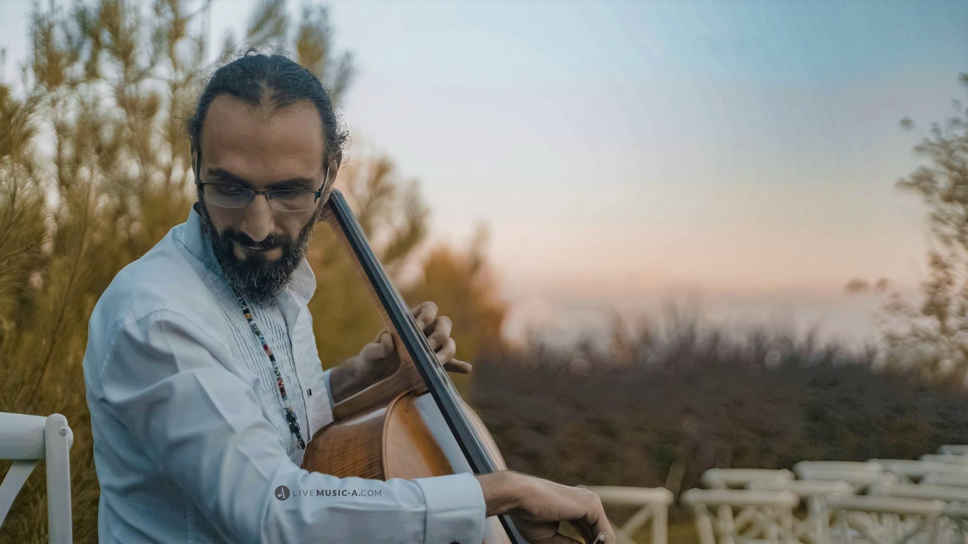 Celloism at Swan Lake