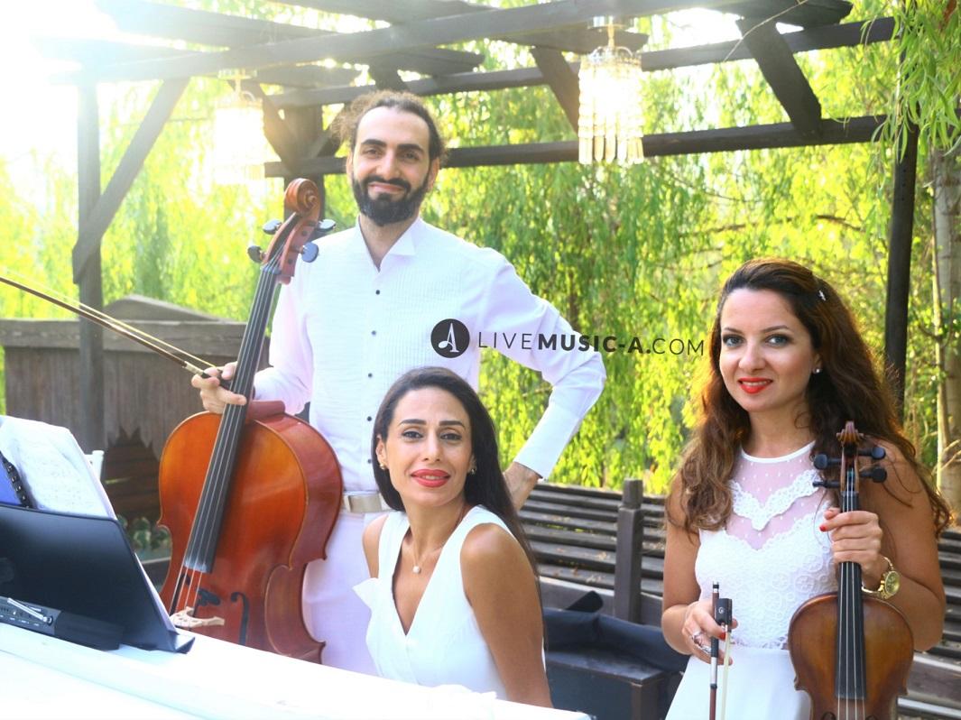 The Trio Vivace in White