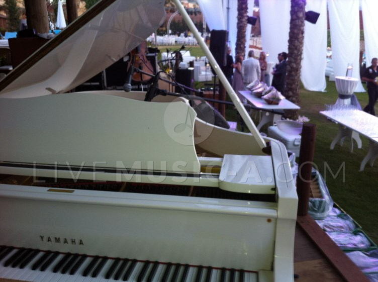 wedding reception grand white piano