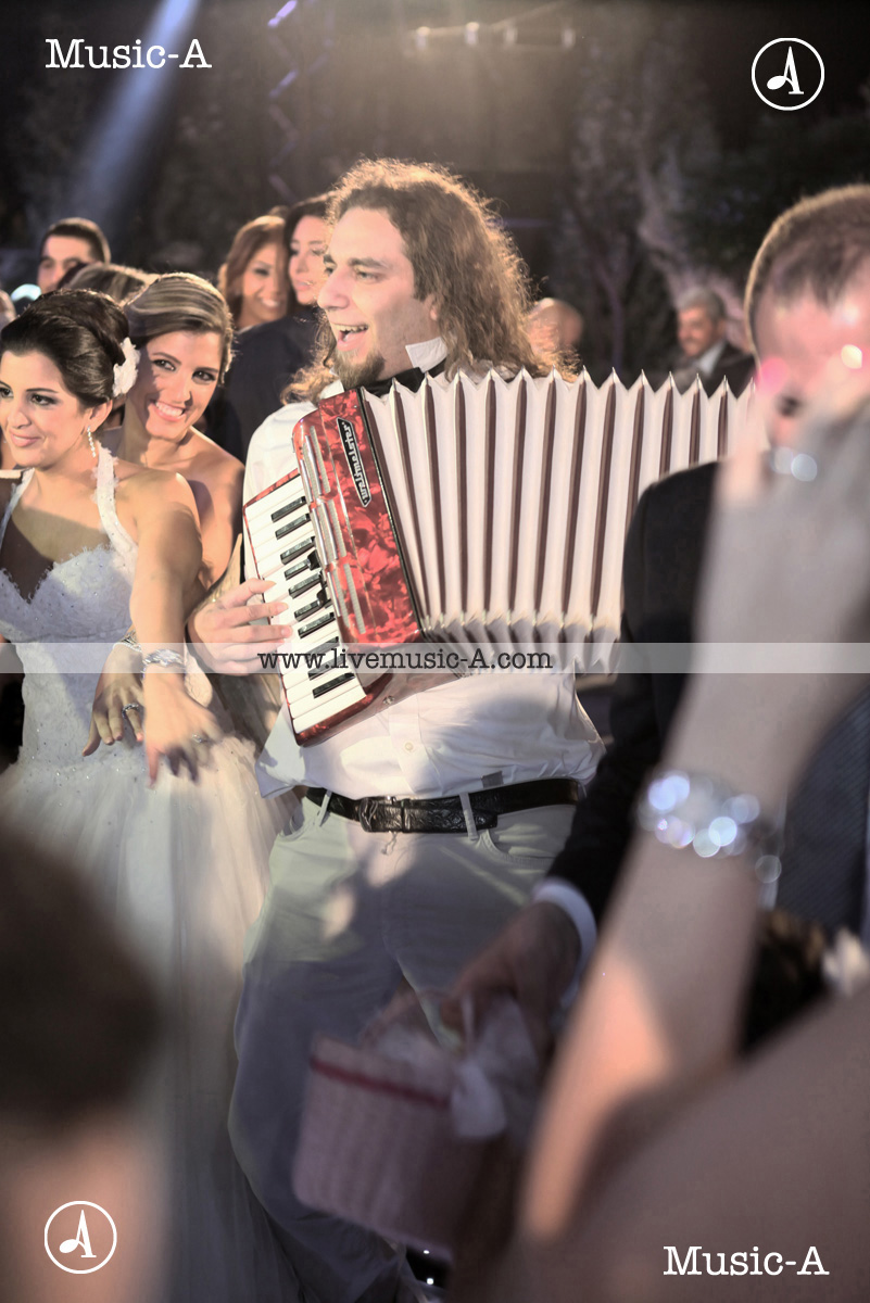 Accordion for your wedding..