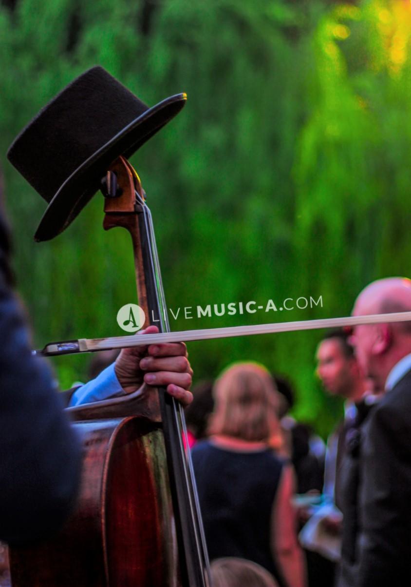 Mr.Cello