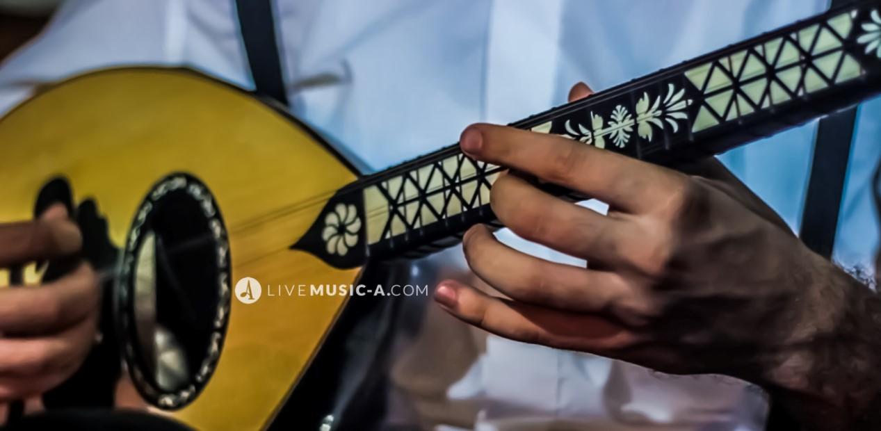 ( Bağlama - Saz - Buzuq - Bozorg ) Turkish music hitting on