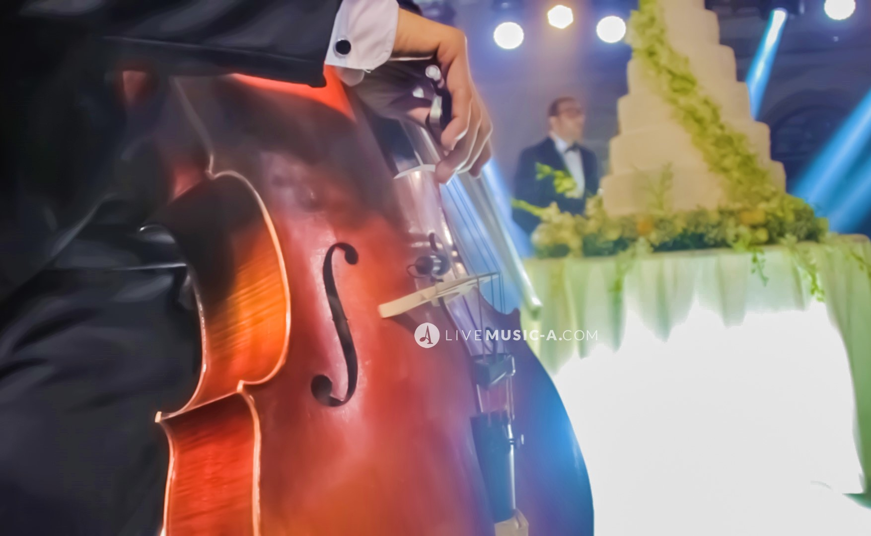 Cello at the cake cutting