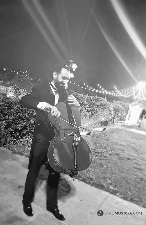The Walking Cellist.