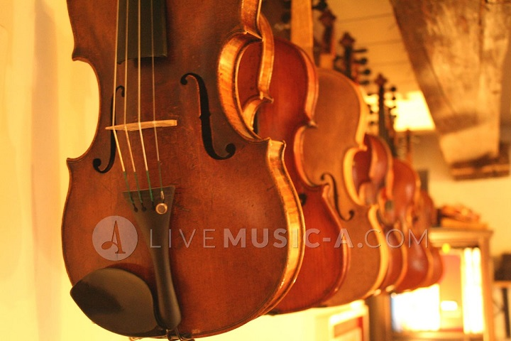 hand made violins