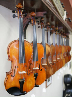 violins for student and professionals